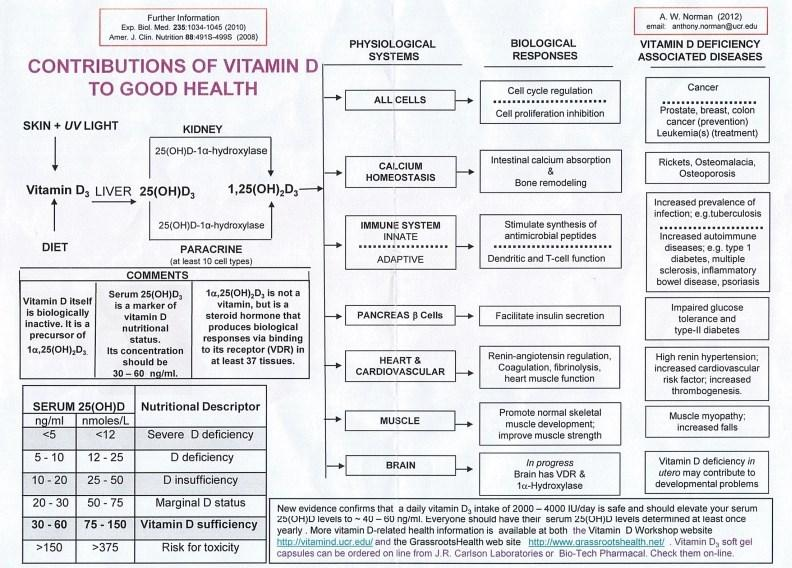 Chart ; wikipage http://www.vitamindwiki.com/tiki-index.php?page_id=1370