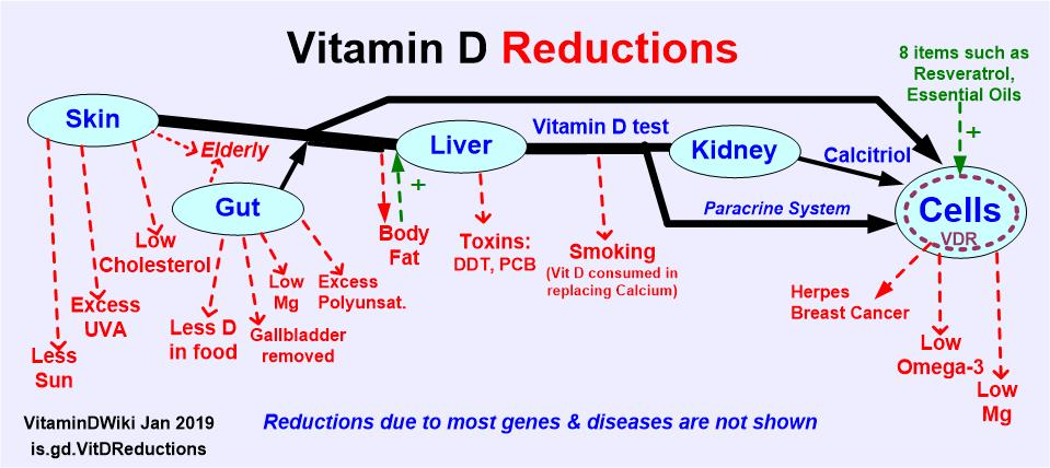 18++ Vitamin d injections for osteoporosis info