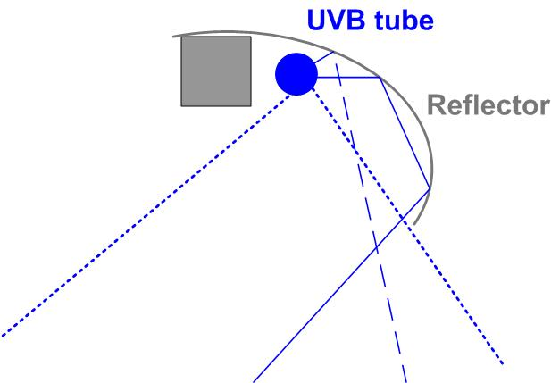 Vitamin D From Low Cost Uvb Lamps