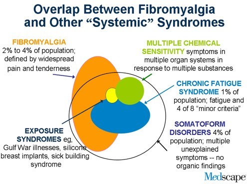Overview Fibromyalgia Or Chronic Fatigue And Vitamin D