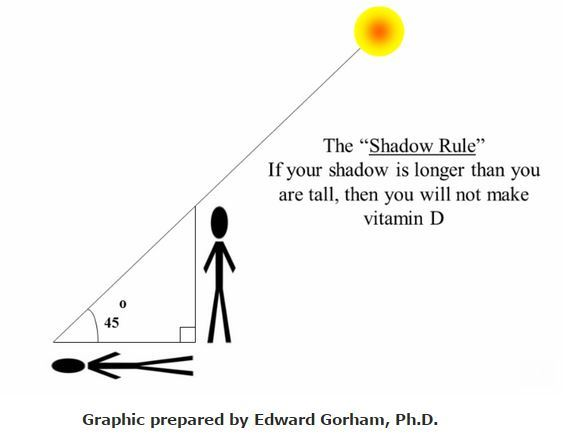 The Shadow Rule You Make Vitamin D When You Are Taller Than Your Shadow 1992 Vitamindwiki