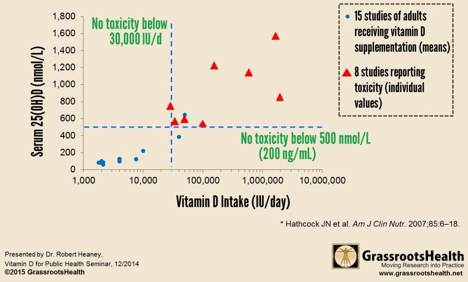 Short Url Http Is Gd Toxicvd Overview Toxicity Of Vitamin D