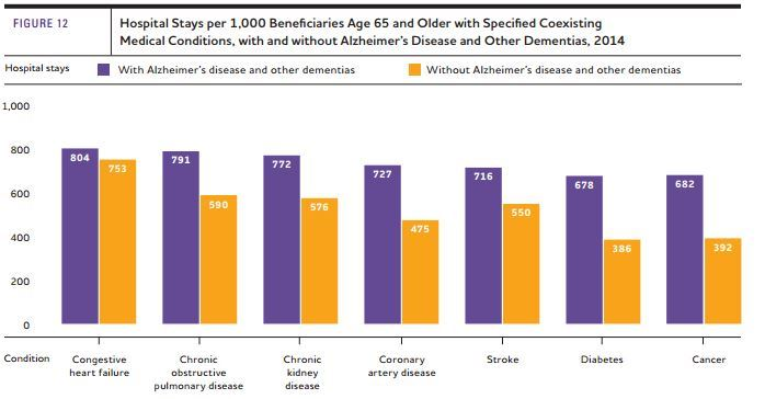 Alzheimers-Cognition - Overview |